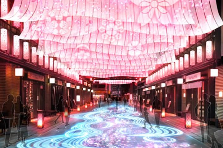 日本桥樱花节