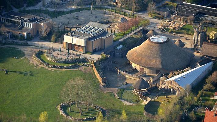 奥尔堡动物园旅游图片