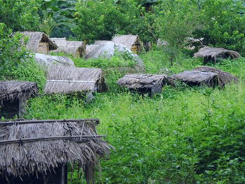 古田自然保护区旅游景点图片