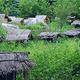 古田自然保护区