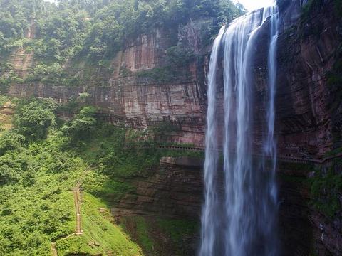 习水森林公园旅游景点图片
