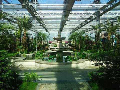 现代农业博览园旅游景点图片