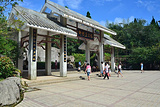 柳杉王公园