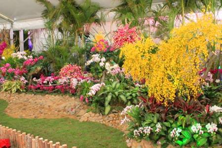 中国兰花博览会