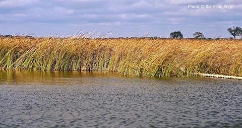 上都湖原生态旅游牧场