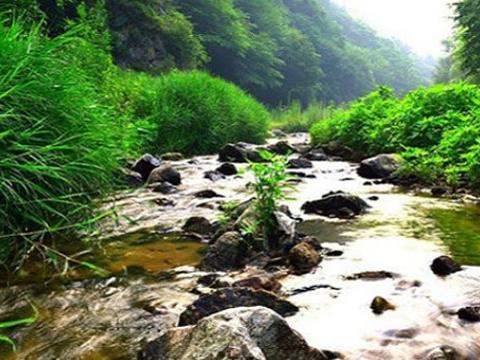 玉龙溪原始森林公园旅游景点图片