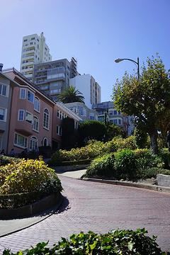 九曲花街旅游景点攻略图