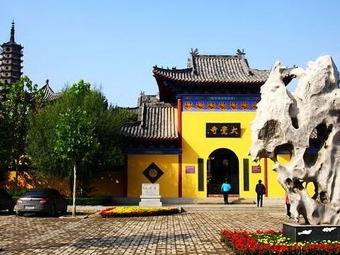 大觉寺旅游景点图片
