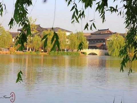 真如禅寺旅游景点图片
