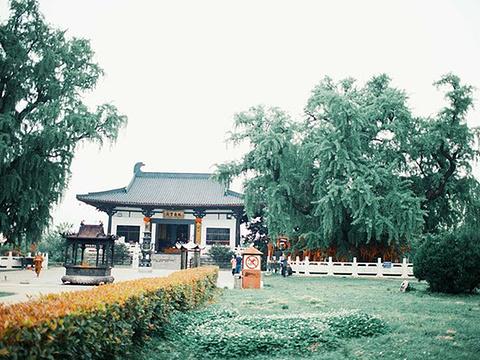 南京惠济寺旅游景点图片