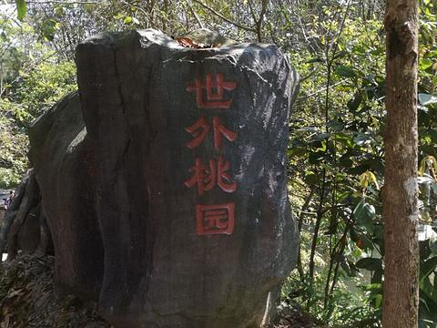 凤凰谷景区旅游景点图片