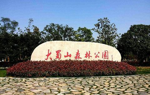 蜀山森林公园