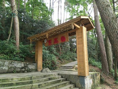 贵阳森林公园旅游景点图片