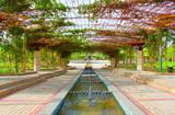 龟兹生态园
