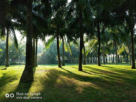 白沙门公园旅游景点图片