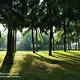 白沙门公园