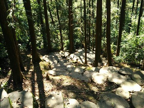 清水岩旅游景点图片