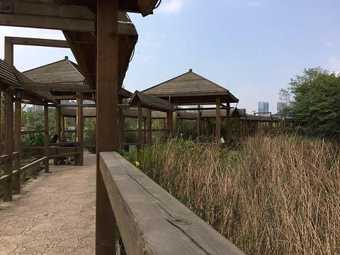 观山湖公园旅游景点图片