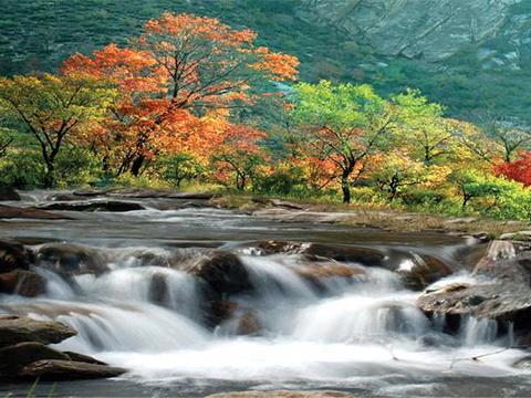 九龙湾旅游景点图片