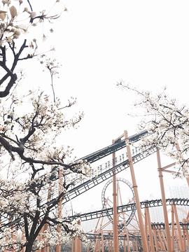 郑州世纪欢乐园