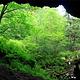 宁安市火山口国家森林公园