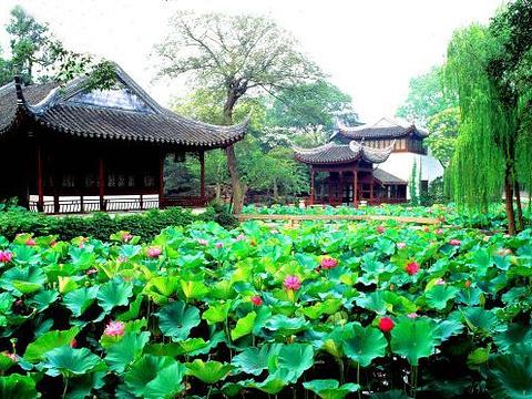 远香堂旅游景点图片