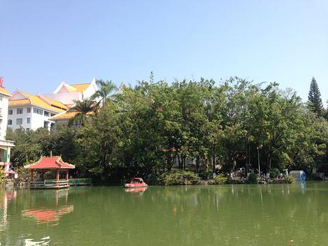 孔雀湖的图片