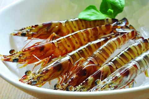 久米岛斑竹虾