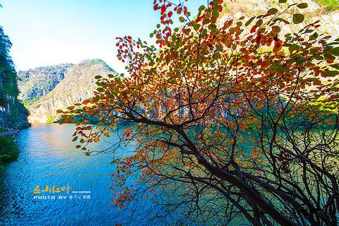 巫山小三峡的图片