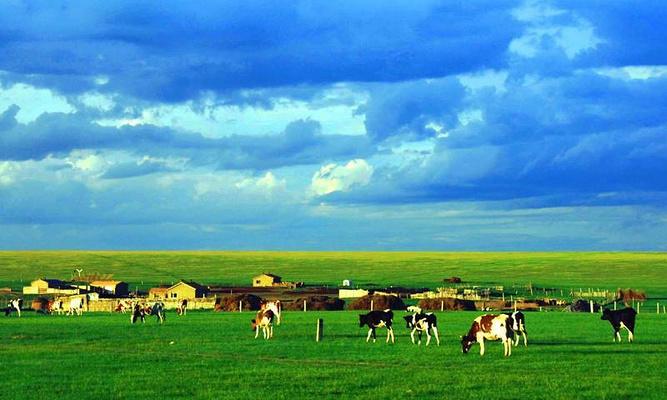 格根塔拉草原旅游图片