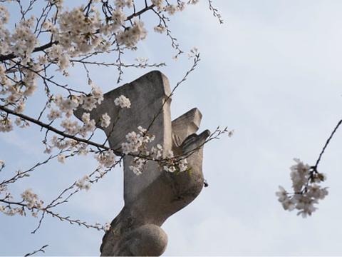 鲲鹏广场旅游景点图片