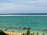 SHINRI浜
