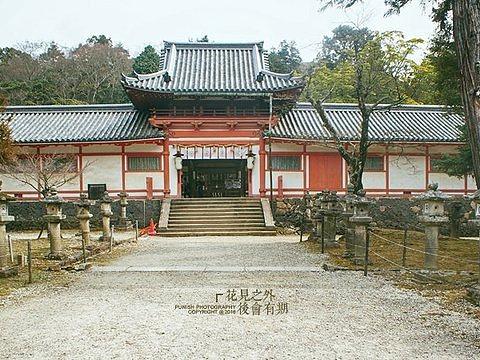 手向山神社旅游景点图片