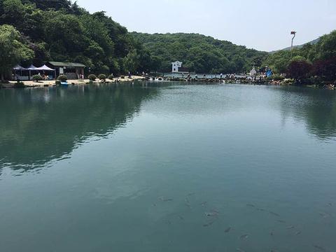 珍珠泉风景区的图片