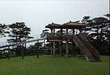 达摩山公园