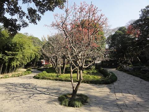 小桃坞旅游景点图片
