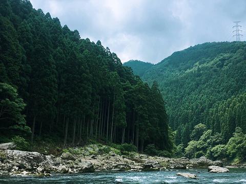保津峡漂流旅游景点图片
