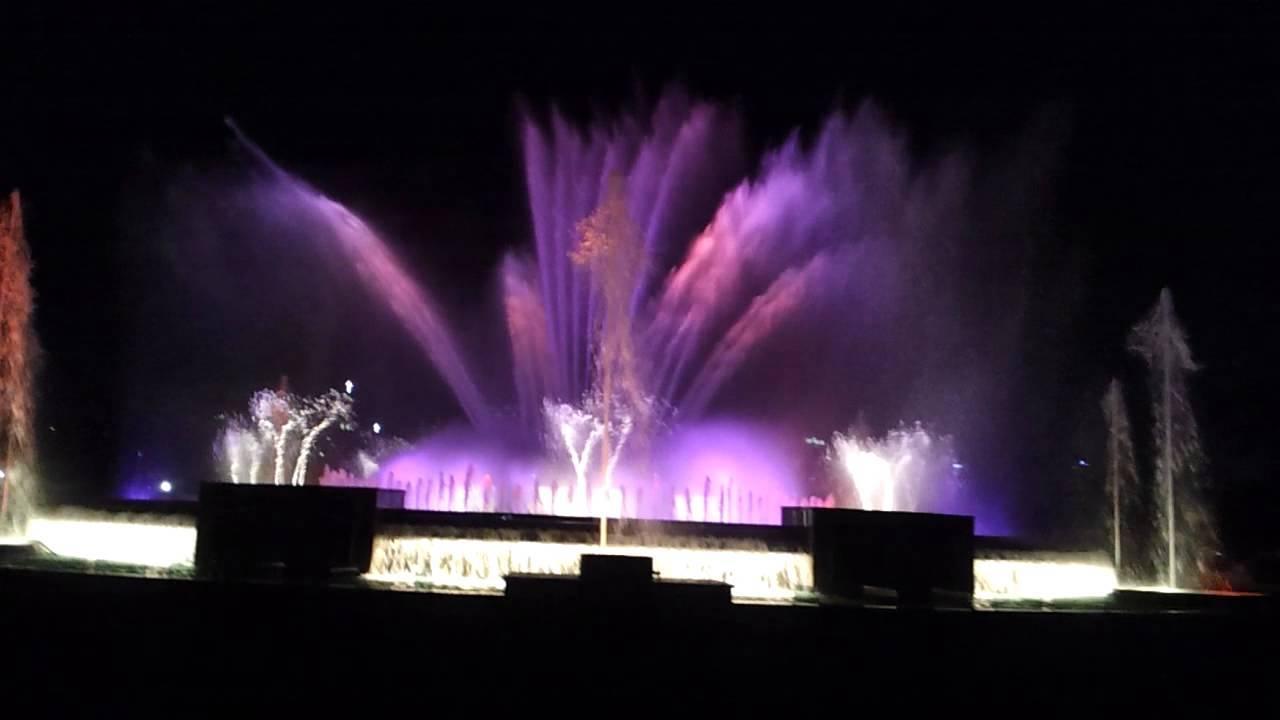 高阳湖水艺术节