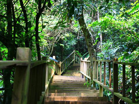 鸣凤谷旅游景点图片