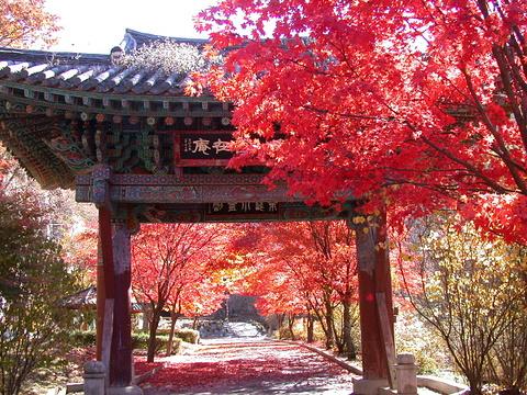 东豆川市旅游图片