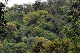 佳西自然保护区
