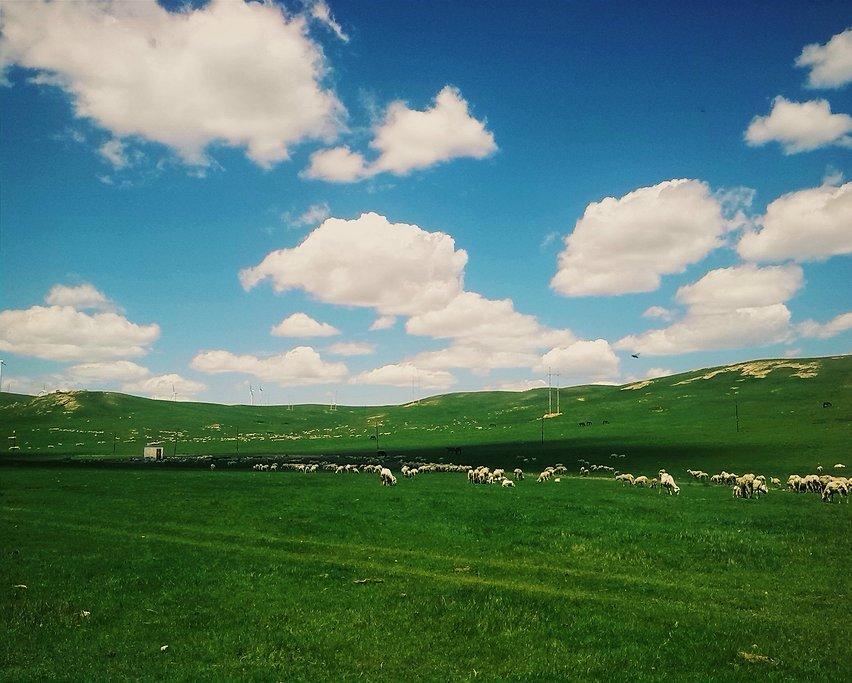 乌兰察布草原风情两日游