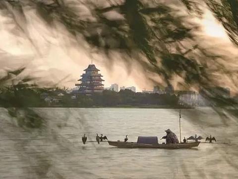 桃花岛旅游景点图片