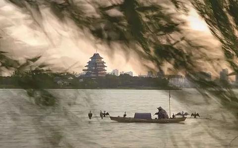 桃花岛的图片