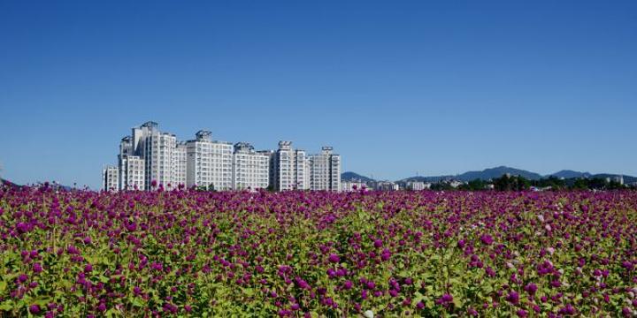 杨州市旅游景点图片