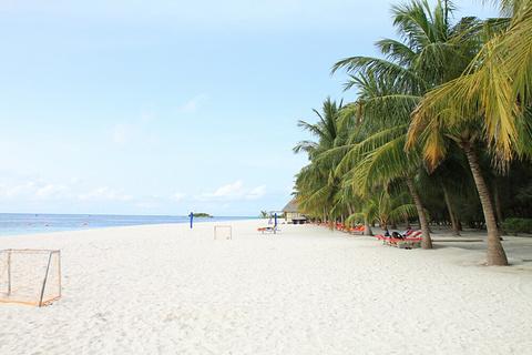纳卢苏安岛的图片