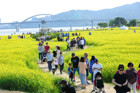 九里市旅游图片
