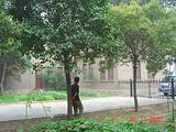 新乡市博物馆