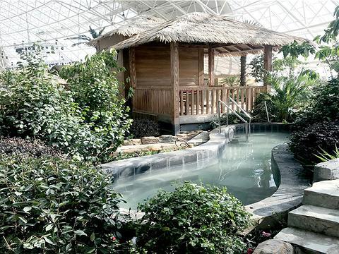 西部恐龙水乐园室内温泉馆旅游景点图片