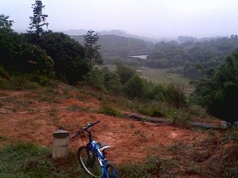 风云岭森林公园旅游景点图片